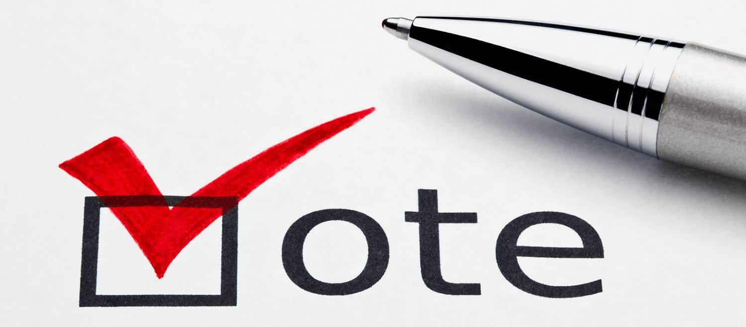 Nomination, voting and election procedures 2020